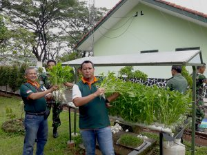 Asabi Hydroponic lake plantation