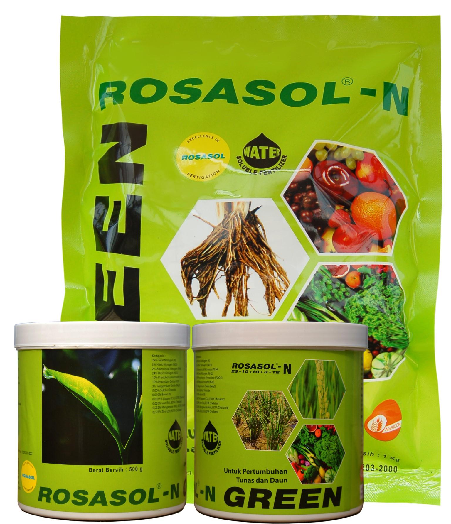 Rosasol N Hijau