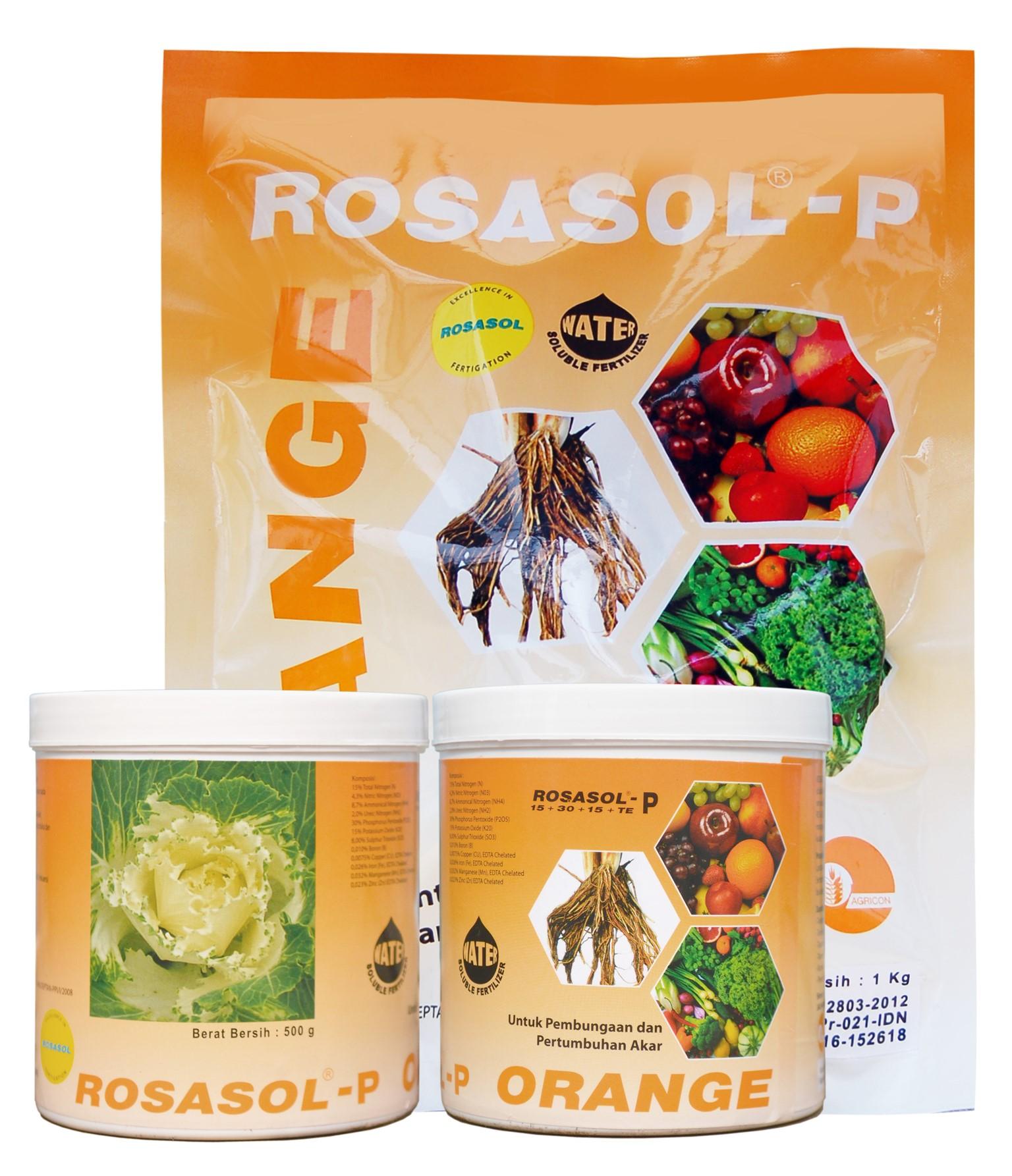 Rosasol P Oranye