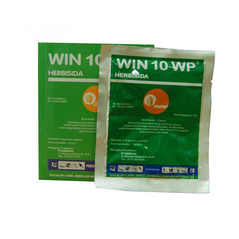 Win 10 WP