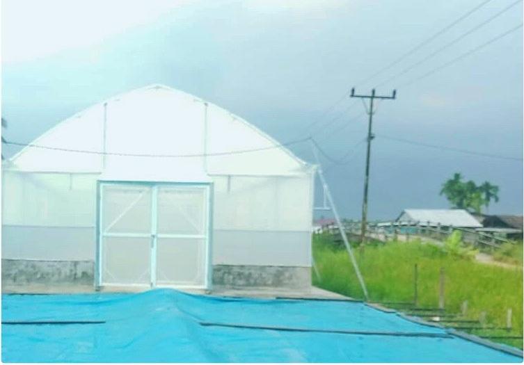 panen, agruculture, greenhouse, rumah pengering, dryer, ASABI, hidroponik, irigasi